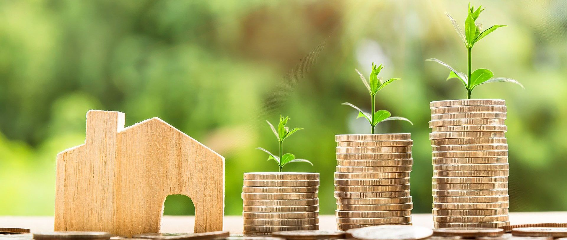 Geld Sparen Immobilie